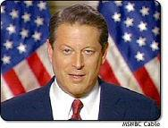 Al Gore Flags